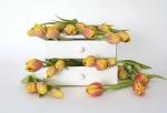 tulips-2101912_960_720